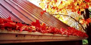 Herbst Dach